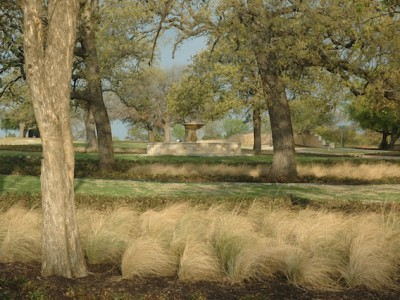 Large Existing Oak Trees with New Landscaping