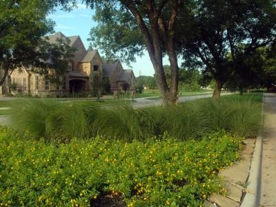 Estes Park Landscaped Median
