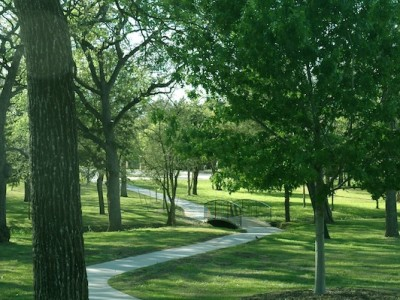 Hiking Trail in Green Space