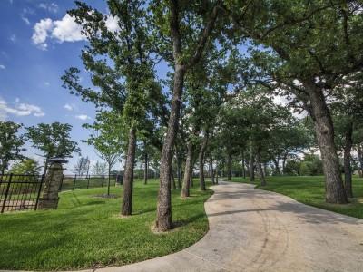 Preservation Trees